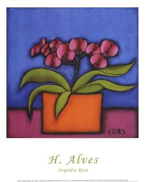 Orquidia Rosa by H. Alves