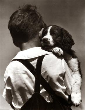 Puppy Love by H. Armstrong Roberts