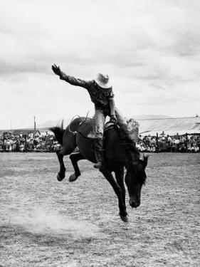 Rodeo Cowboy by H. Armstrong Roberts