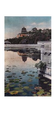 Painting of a Lily Lake with Chinese Architecture in the Background by H. C. and J. H. and Deng White and Bao-Ling