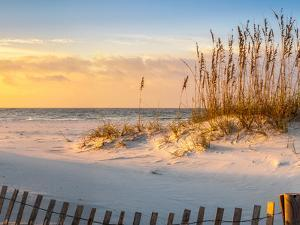 Sunrise at Pensacola Beach with Sea Oats and Dune Fence Panoramic by H J Herrera