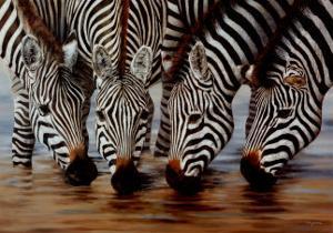 Stripes by H. Van Zanten