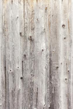 Vintage White Background Wood Wall. by H2Oshka