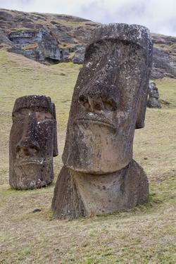 Statues Called Moais at Rano Raraku by Hal Beral
