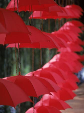 Umbrella Lights, Kunming, China