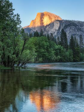 Half Dome Reflected in Merced River, Yosemite Valley, Yosemite National Park, California, USA