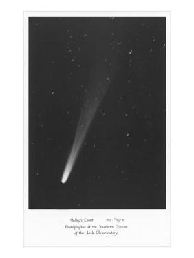Halley's Comet Photograph
