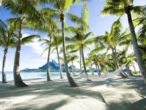 Hammock at Bora Bora, Tahiti