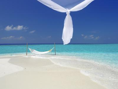 https://imgc.allpostersimages.com/img/posters/hammock-hanging-in-shallow-clear-water-the-maldives-indian-ocean-asia_u-L-PFNVMB0.jpg?artPerspective=n