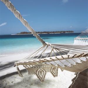 Hammock on a Beach