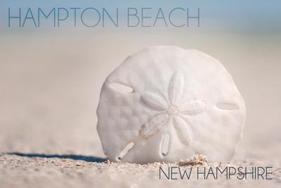 https://imgc.allpostersimages.com/img/posters/hampton-beach-new-hampshire-sand-dollar-on-beach_u-L-Q1GQTA20.jpg?artPerspective=n