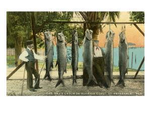 Hanging Fish, St. Petersburg, Florida