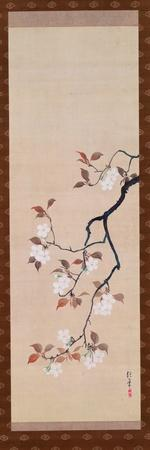 https://imgc.allpostersimages.com/img/posters/hanging-scroll-depicting-cherry-blossoms-from-a-triptych-of-the-three-seasons-japanese_u-L-PG93SY0.jpg?artPerspective=n