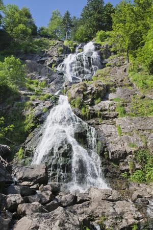 https://imgc.allpostersimages.com/img/posters/hangloch-wasserfall-todtnau-black-forest-baden-wurttemberg-germany_u-L-Q1EY4LG0.jpg?artPerspective=n