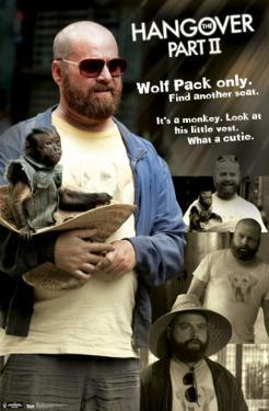 Hangover 2 - Quotes