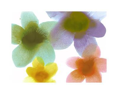Floral Friends II