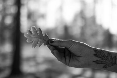 Woman With An Oak Leaf Tattoo Holds A Gambel Oak Leaf In The Forest Of New Mexico