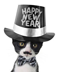 Cute Black and White Kitten with Moustache, Bow Tie and Happy New Year Hat by Hannamariah