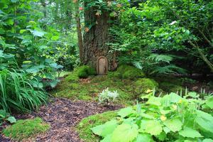 Little Fairy Tale Door in a Tree Trunk. by Hannamariah