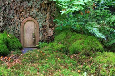 Little Wooden Fairy Tale Door In A Tree Trunk by Hannamariah