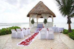Tropical Wedding by Hannamariah