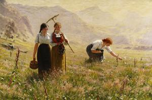 Summer's Day in Norway; Ein Sommertag in Norwegen by Hans Dahl