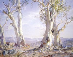 White Gums in Morning Light, 1961 by Hans Heysen