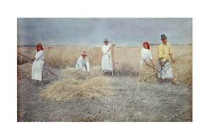 A Group of Men and Women Wear Aprons Working in the Field by Hans Hildenbrand