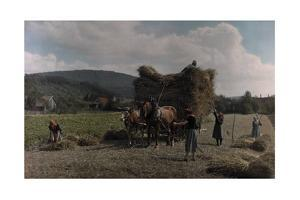 A View of a Typical Farming Team on the Swabian Alb with their Horses by Hans Hildenbrand