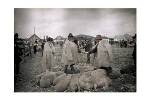 Men Bargain at the Weekly Market for Woolly Hair by Hans Hildenbrand