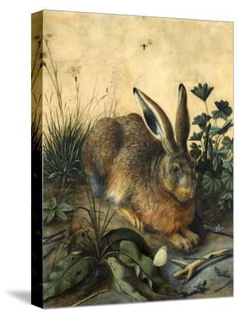Hare by Hans Hoffmann