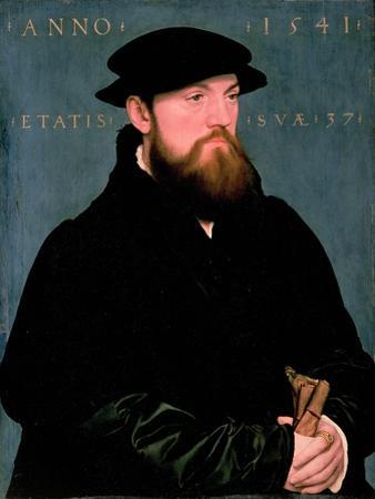 De Vos Van Steenwijk by Hans Holbein the Younger