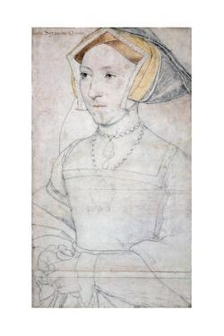 Portrait of Queen Jane Seymour by Hans Holbein the Younger