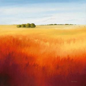 Red Fields II by Hans Paus