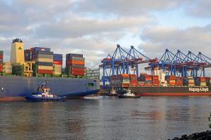 Container terminal Altenwerder, Hamburg, Germany, Europe by Hans-Peter Merten