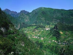 Cruzinhas, Madeira, Portugal by Hans Peter Merten