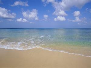 Paynes Bay, Barbados, Caribbean, West Indies, Central America by Hans Peter Merten