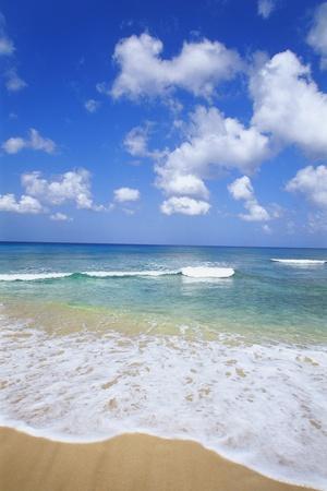 Paynes Bay, Barbados, Caribbean