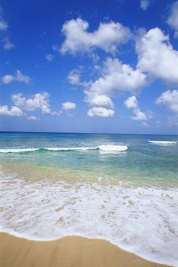 Paynes Bay, Barbados, Caribbean by Hans Peter Merten