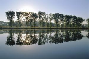 River Rhine Near Xanten, North Rhine-Westphalia (Nordrhein-Westfalen), Germany, Europe by Hans Peter Merten