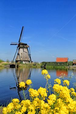 Windmill in Kinderdijk, UNESCO World Heritage Site, South Holland, Netherlands, Europe by Hans-Peter Merten