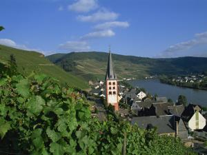Zell-Merl, Mosel Valley, Rheinland-Pfalz, Germany, Europe by Hans Peter Merten