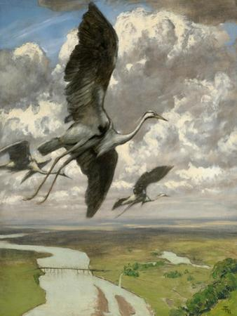 Wondrous Birds, 1892