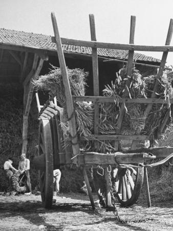 Men Constructing a Wheat Wreath Behind a Wheat Filled Wagon During the Harvest Season by Hans Wild