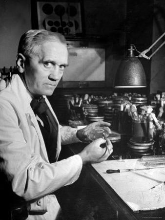 Professor Alexander Fleming Working in Laboratory