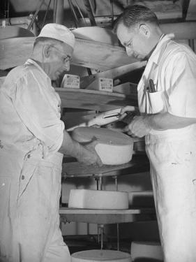 Factory Workers Testing the Newly Manufacture Cheese by Hansel Mieth