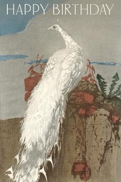 Happy Birthday White Peacock