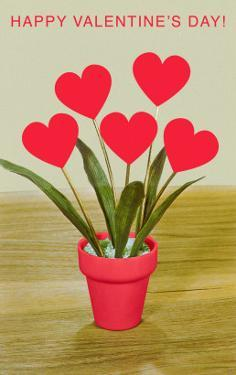 Happy Valentine's Day, Heart Flowers in Pot