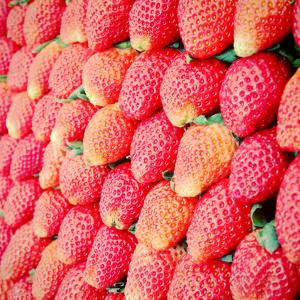Row of Fresh Strawberry with Retro Filter Effect by happydancing