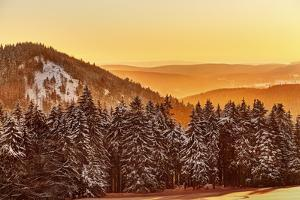 Germany, Thuringia, Gehlberg, SchmŸcke, Mountain Silhouettes, Spruces, Snow, Back Light by Harald Schšn